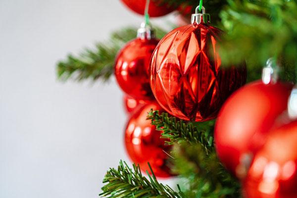 kerstboom-in-de-tuin-of-niet