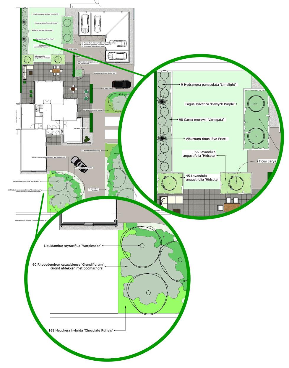 Beplantingsplan achtertuin ontwerpen