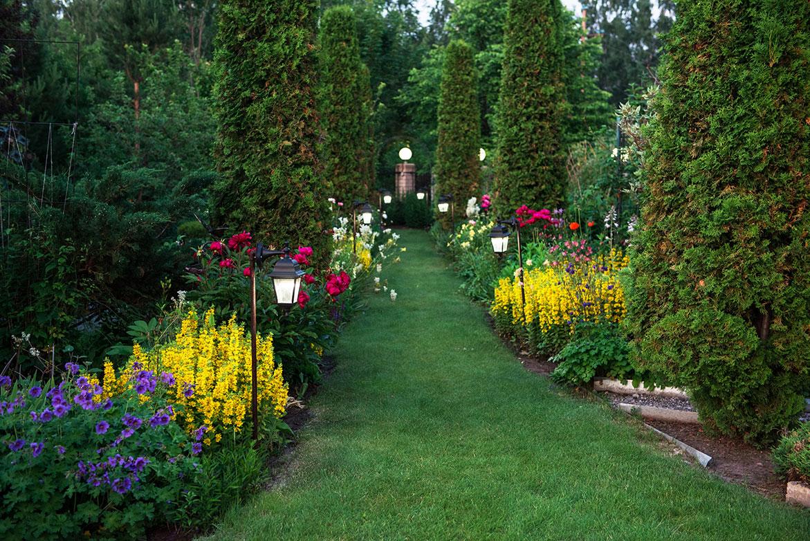 opgefriste tuin met veel kleur header