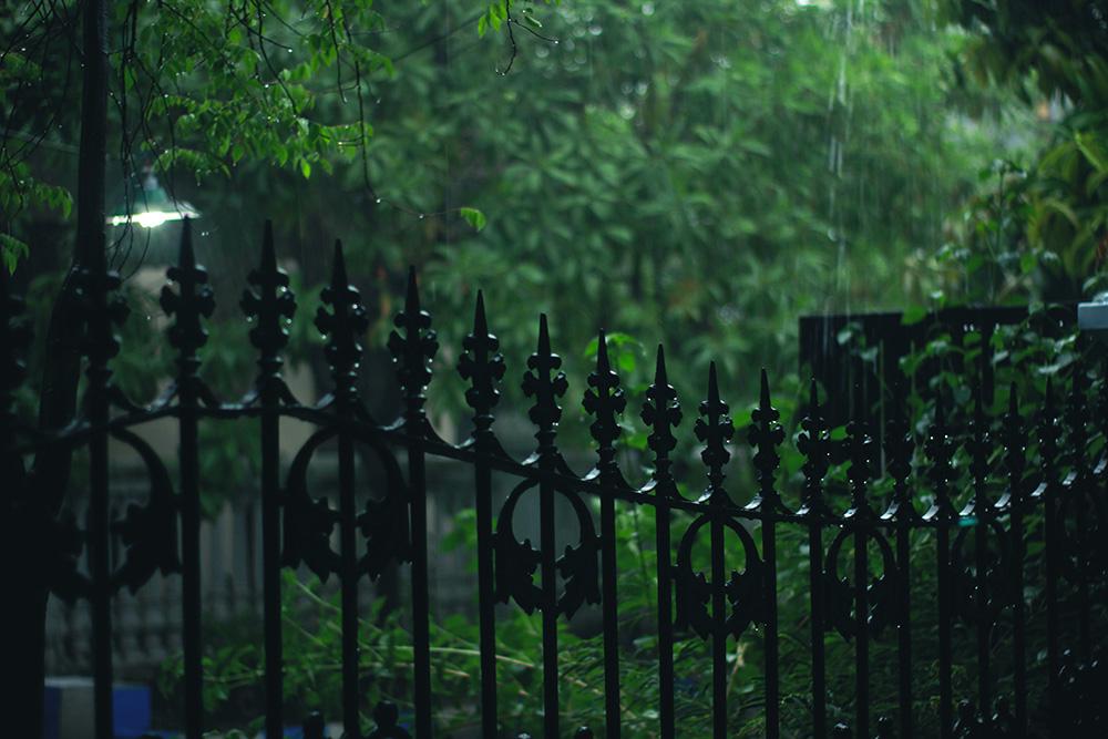 Regen in de tuin