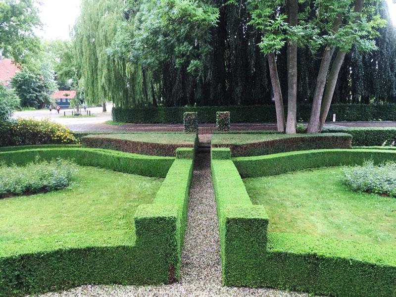 de tuin van 2021 met organische vormen